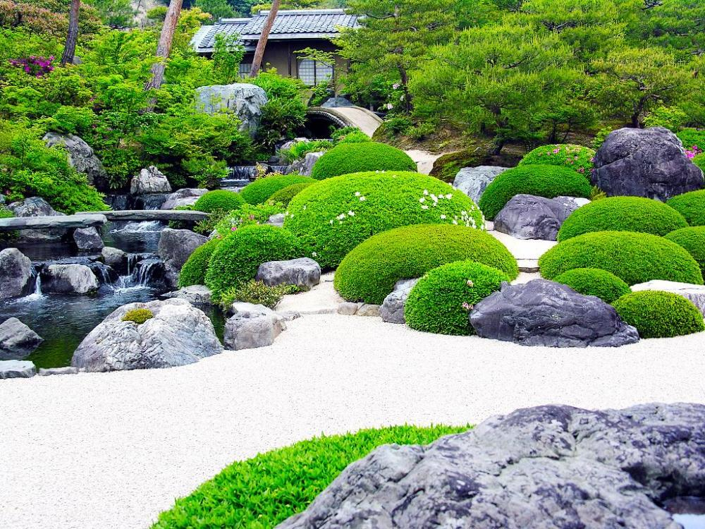 Backyard Japanese Garden Design